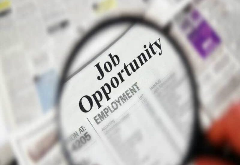 Let us discuss some of the sought after job opportunities in coming months